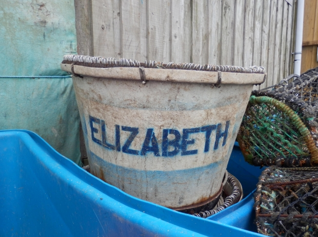 Not one of the names under consideration. (Elizabeth Bucket)