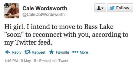 tweet-wordworth