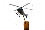 flower helicopter2