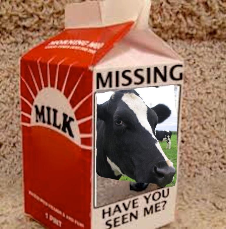 carton cow
